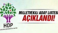 HDP'nin Ordu adayları belli oldu