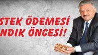 DESTEK ÖDEMESİ SANDIK ÖNCESİ!
