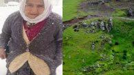 Aybastı'da Kayıp Yaşlı Kadın'ın Cesedi Bulundu