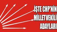CHP'nin Ordu Milletvekili aday listesi